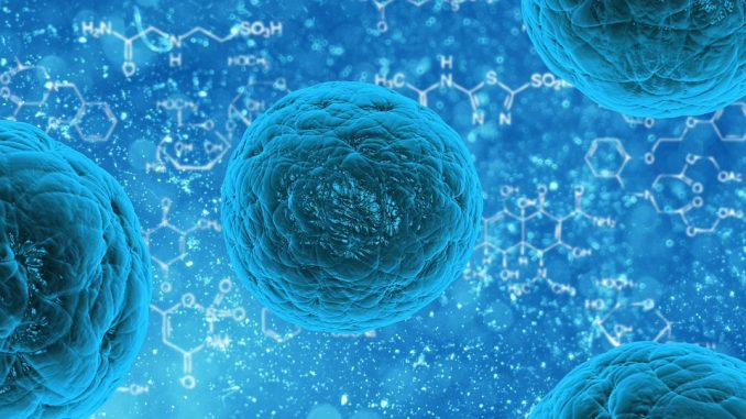 Multiplex Biomarker Imaging Market Growing At Steady CAGR Of 12% To 2029 With Leading Players In Market 45